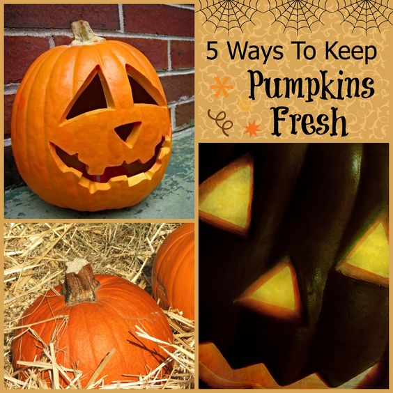 5 Tips for Keeping Pumpkins Fresh