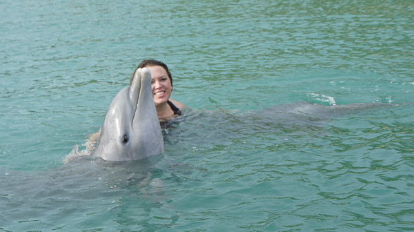 Visiting Grand Bahama Island: The Softer Side of the Bahamas Part 2 - dolphins