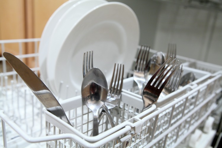 Dishes in the Dishwater