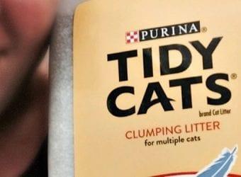 tidy_cats