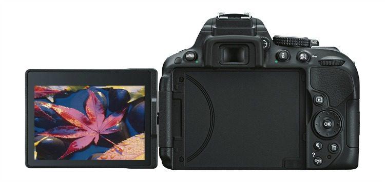 Best Buy DI multi Nikon D5300back