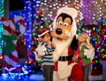 Goofy lights up the holidays