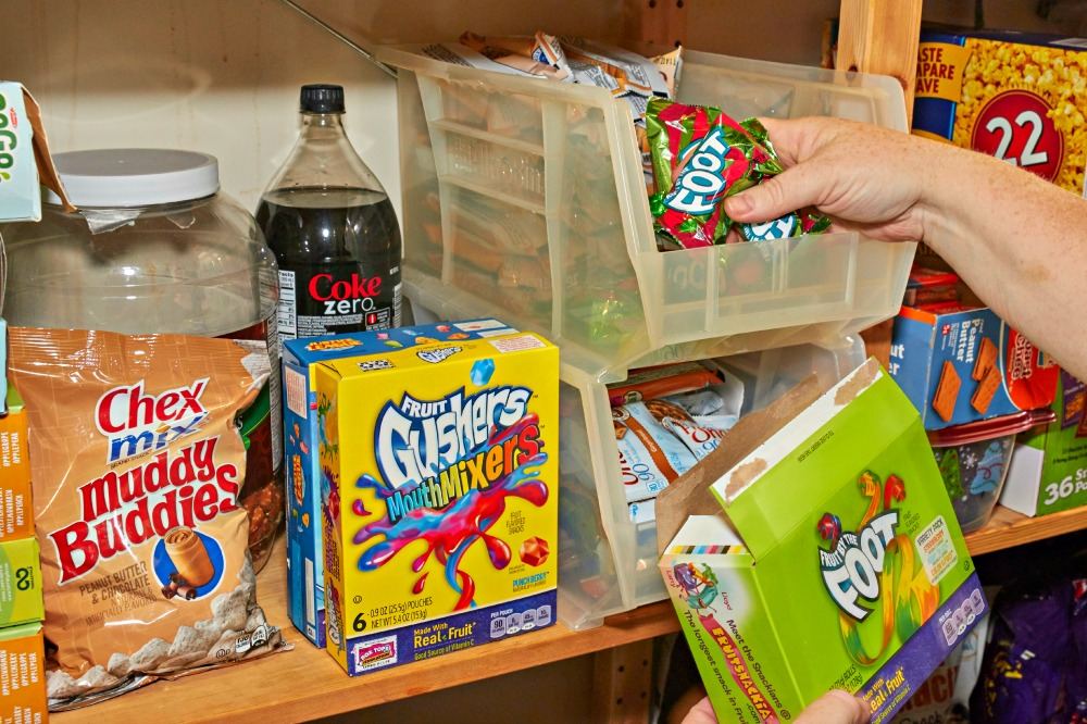 Coupons.com Pantry Purge FruitByTheFoot Snack Container