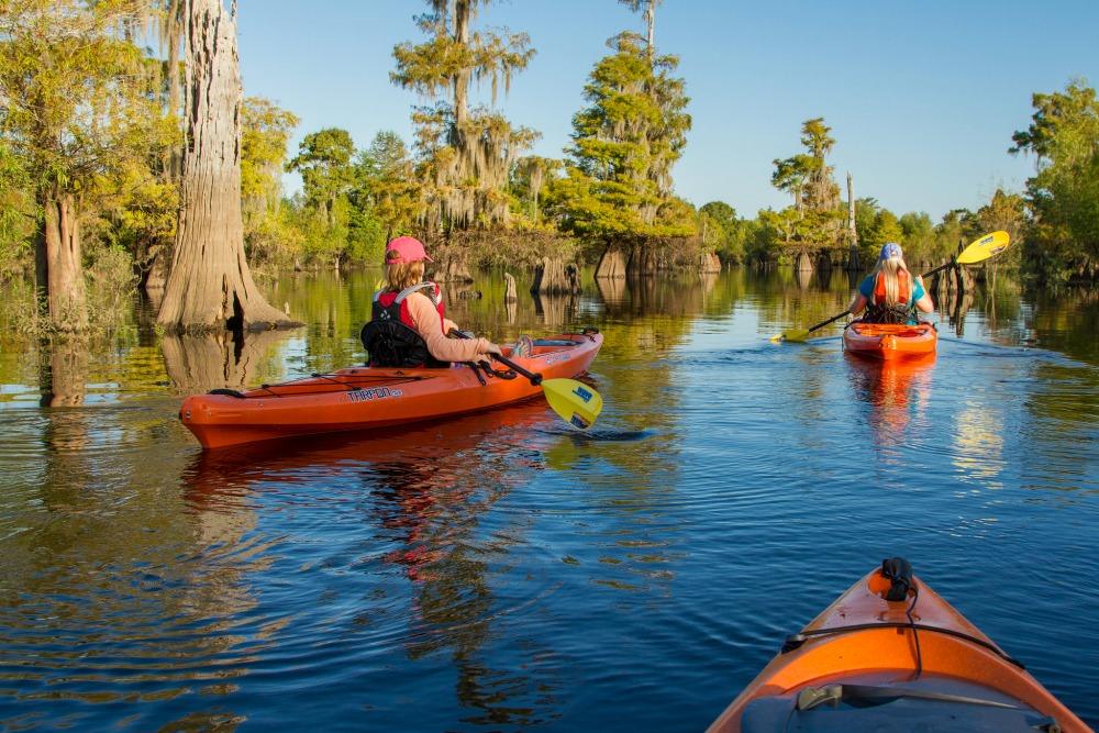 Go on a Gulf County Florida Adventure