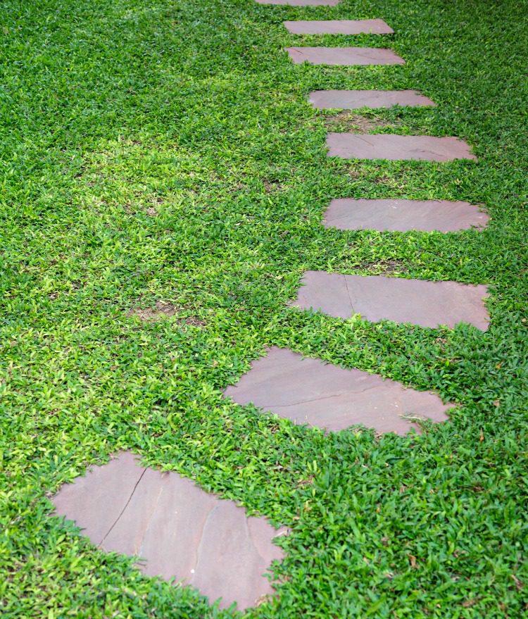 Garden Walkway With Green Grass