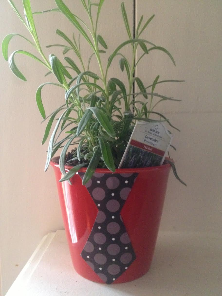 Father's Day Tie Herb Pot 5