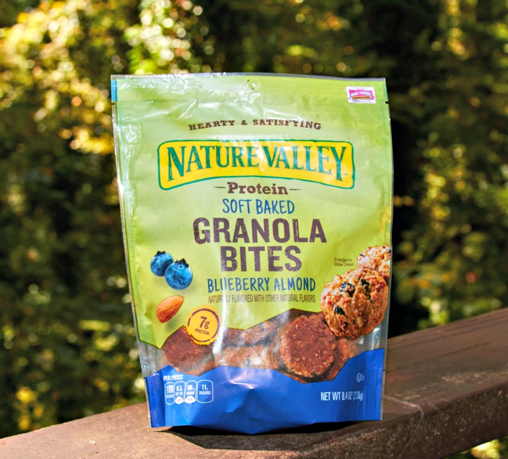 Nature Valley Granola Blueberry Bites 2