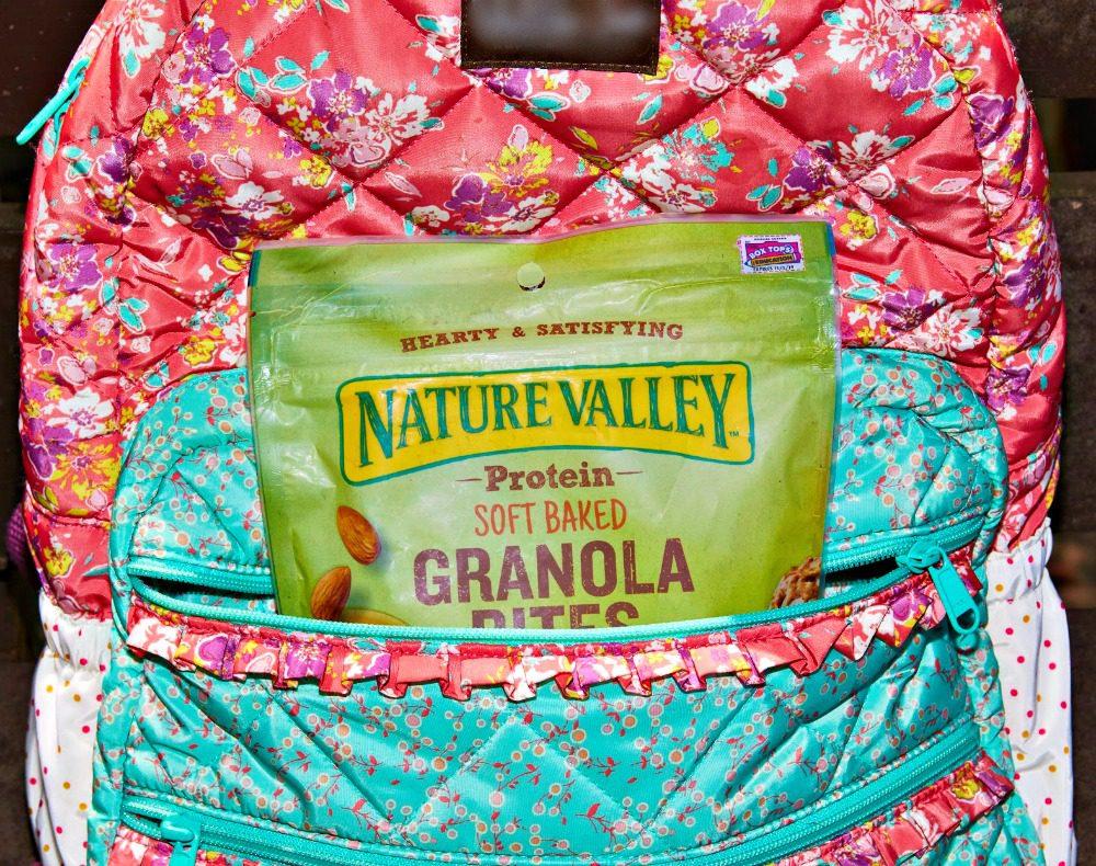 Nature Valley Granola Blueberry Bites 4