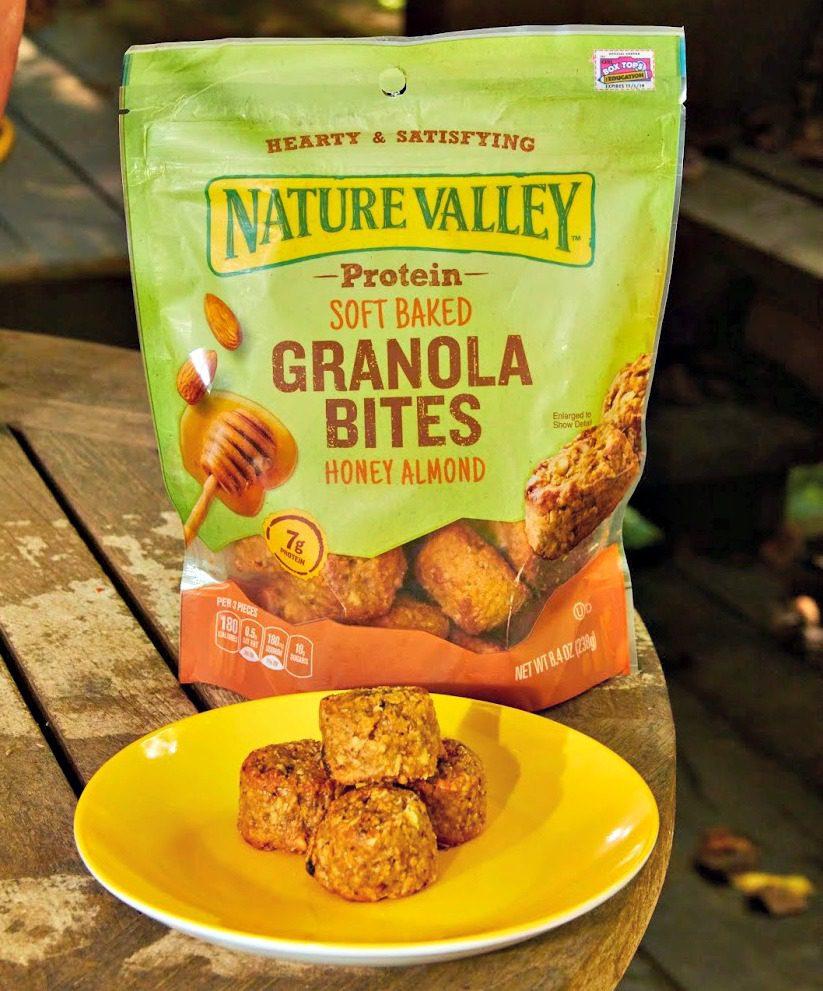 Nature Valley Granola Blueberry Bites 7