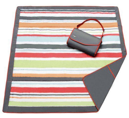 Picnic Blanket Pepto