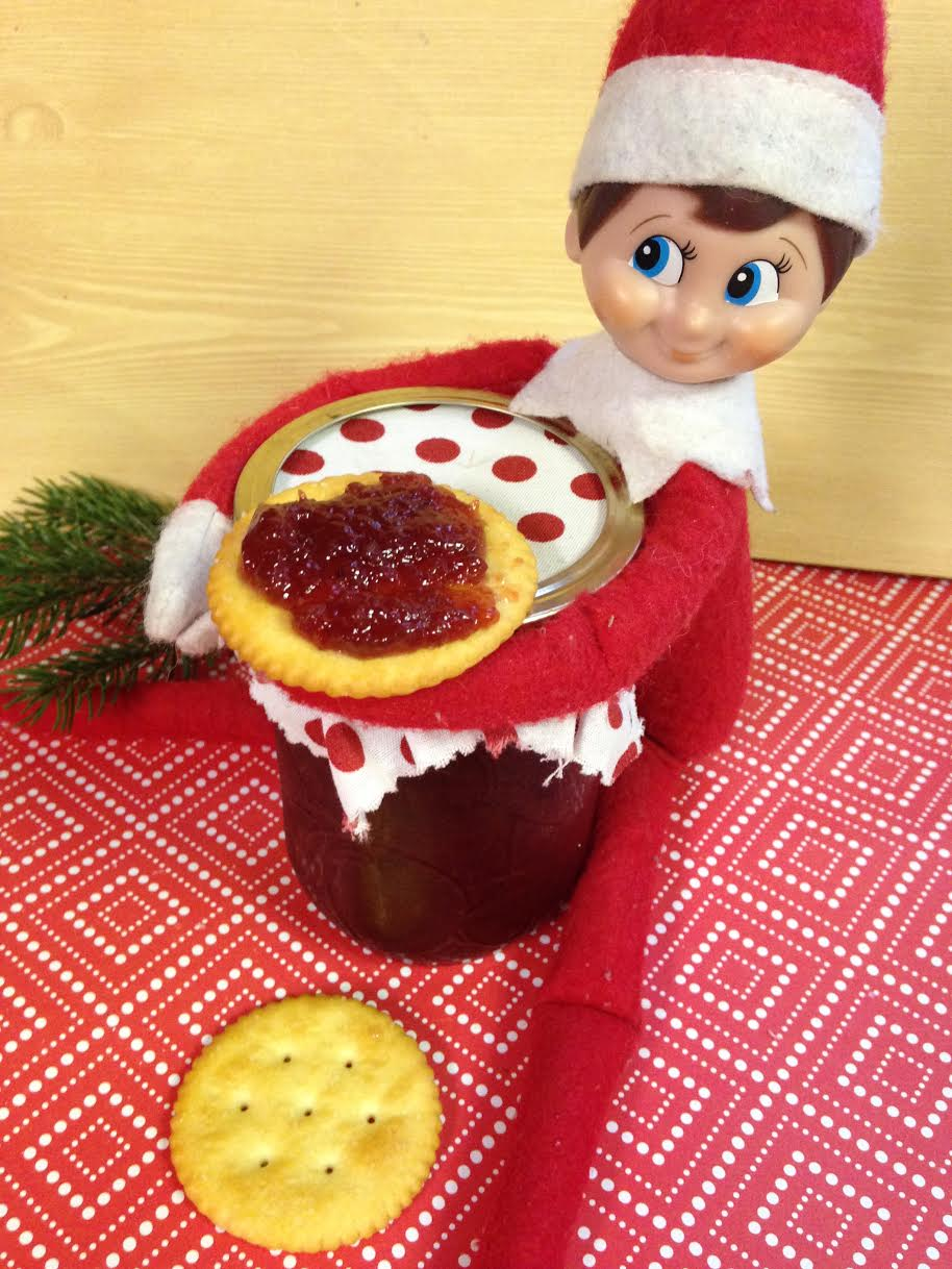 10 Best Elf on the Shelf Ideas
