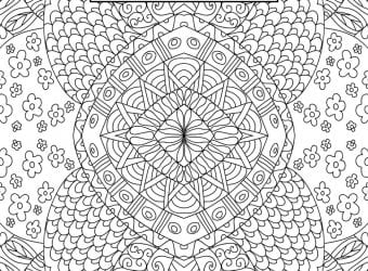 Back to School Adult Coloring Page Binder Covers