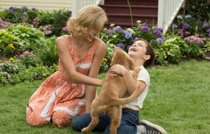 A Dog's Purpose in Theaters January 27 #ADogsPurpose #MyDogsPurpose
