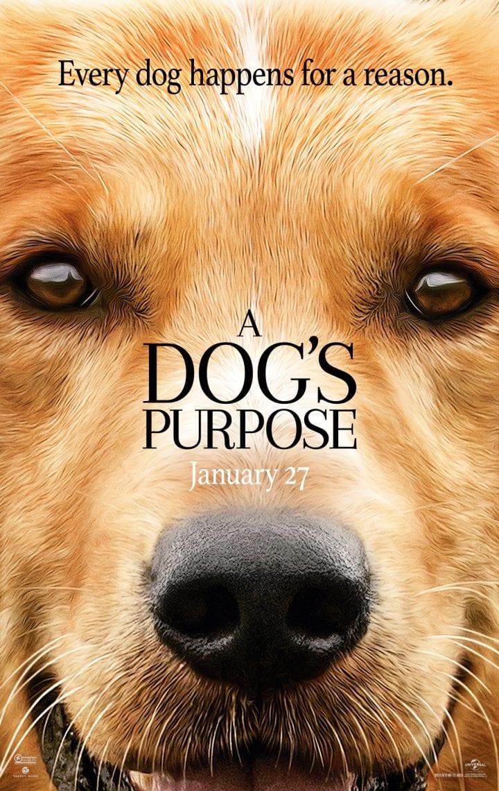 A Dog's Purpose in Theaters January 27 #ADogsPurpose #MyDogsPurpose