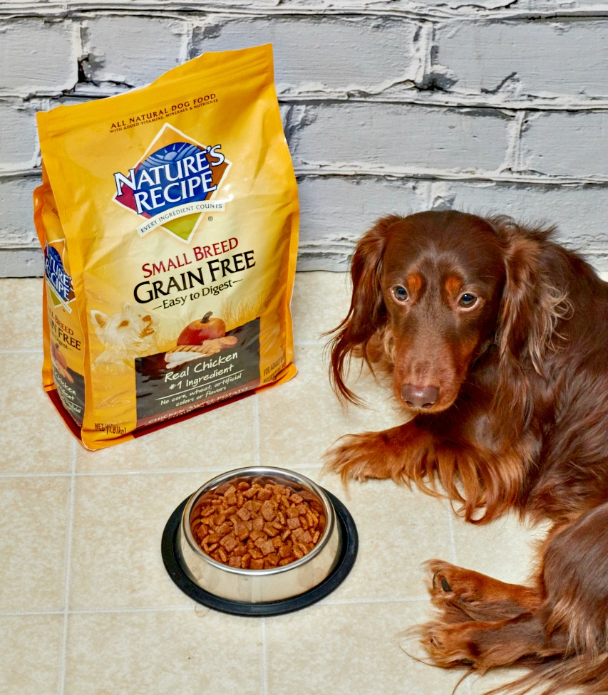Is Natures Made Dog Food Good