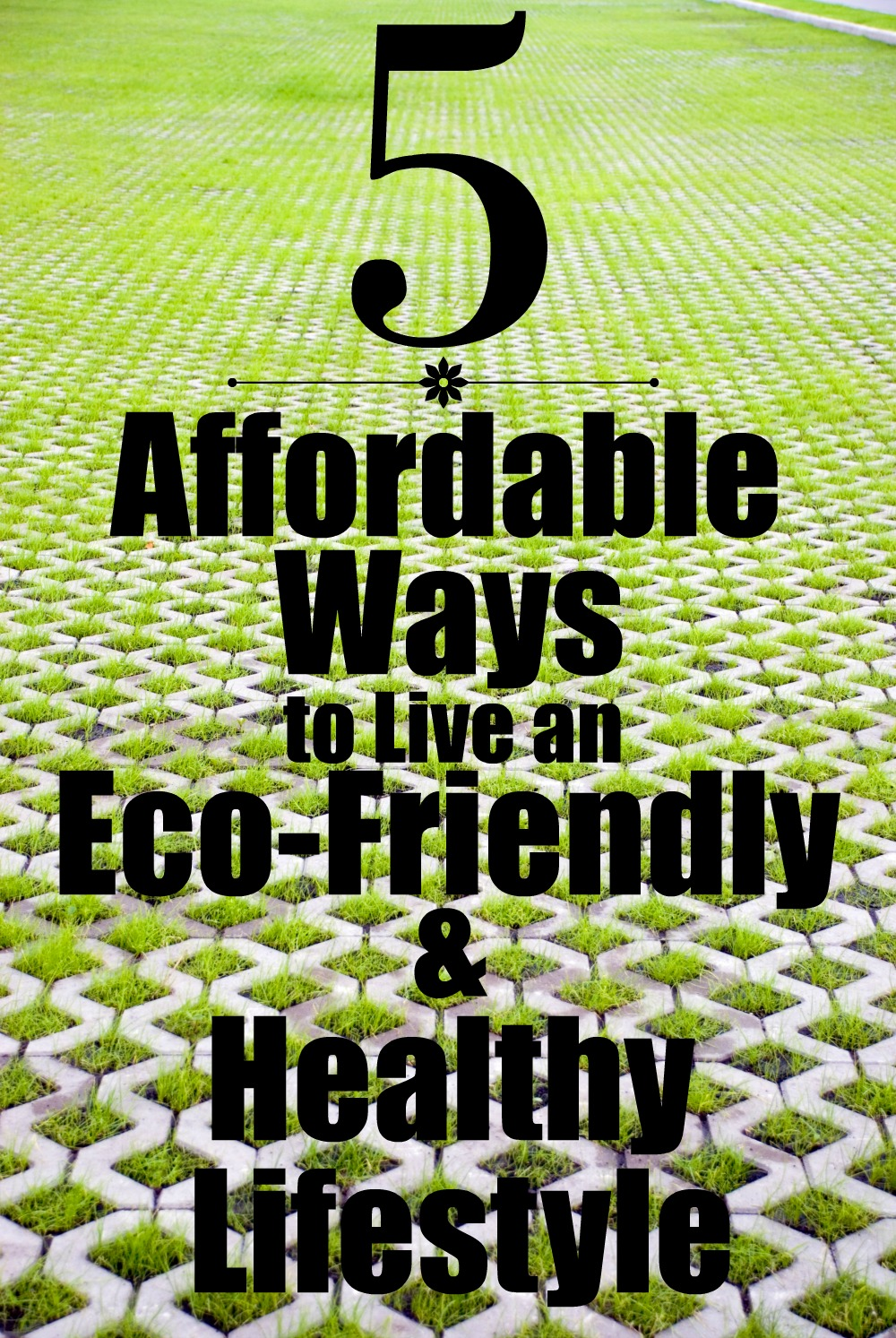 5 affordable ways to live an eco-friendly and healthy lifestyle