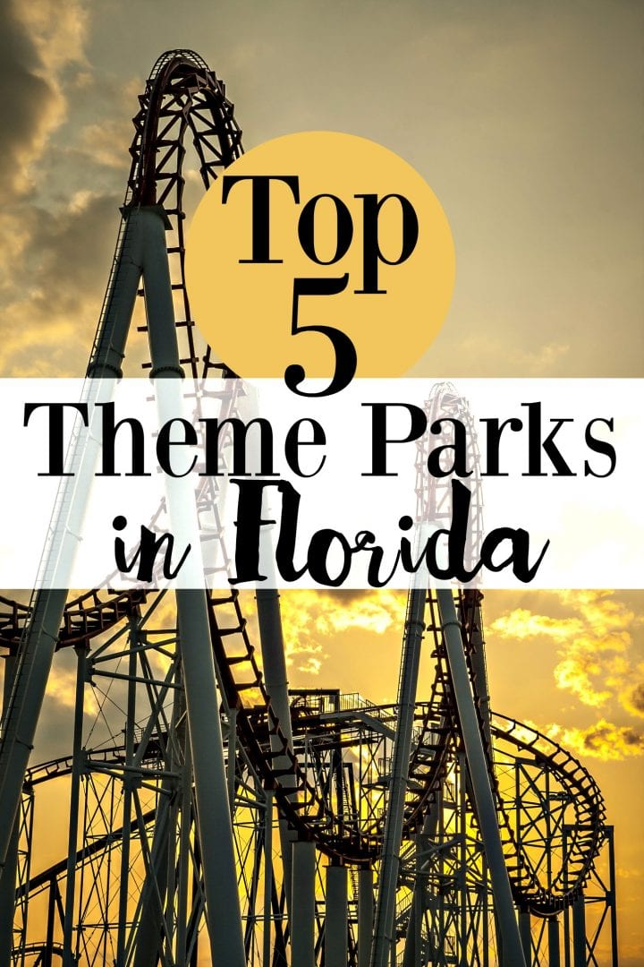 Top 5 Theme Parks in Florida