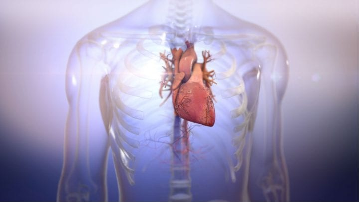 Building Hearts to Save Lives with BIOLIFE4D