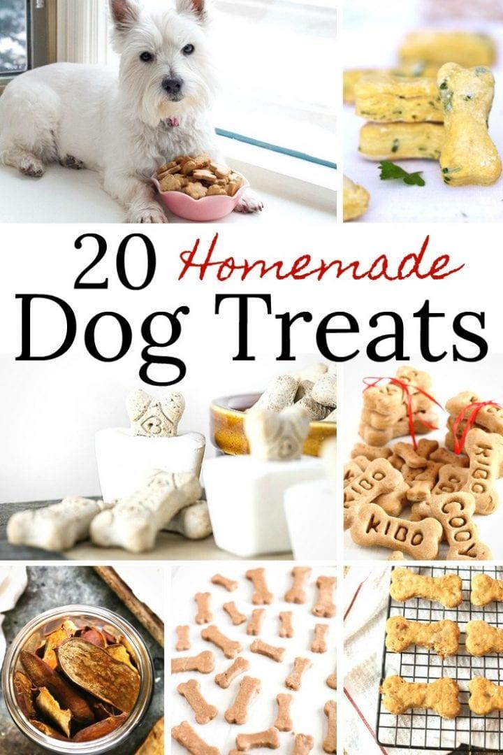 20 Homemade Dog Treats Recipes
