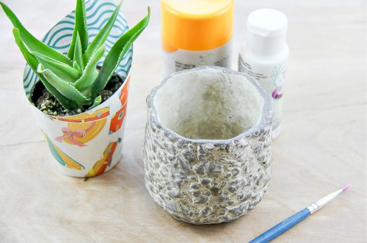 Easy DIY Pineapple Succulent Planter