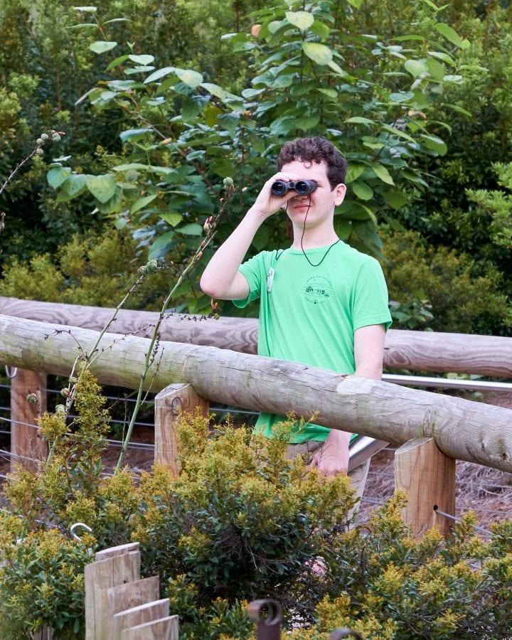 Zoo Atlanta's Twilight Trek 11