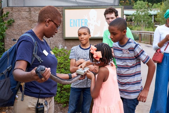 Zoo Atlanta's Twilight Trek 6