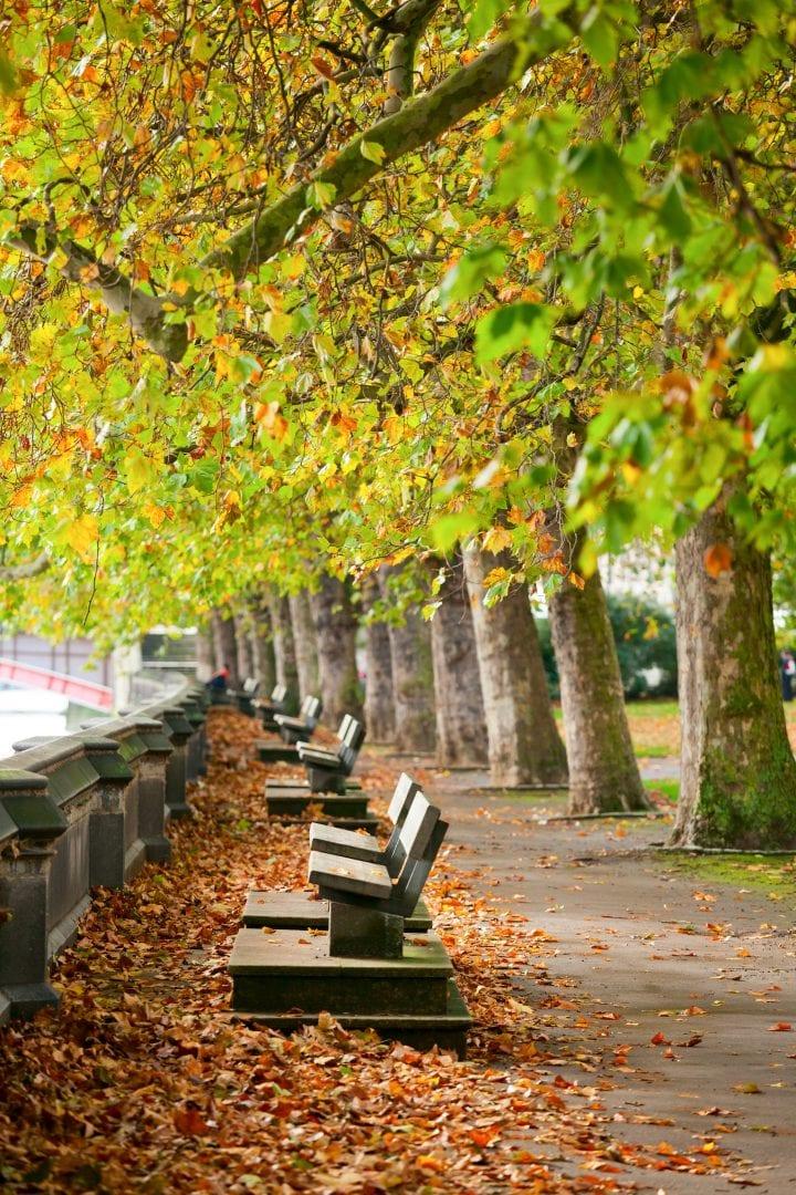 Top London Parks