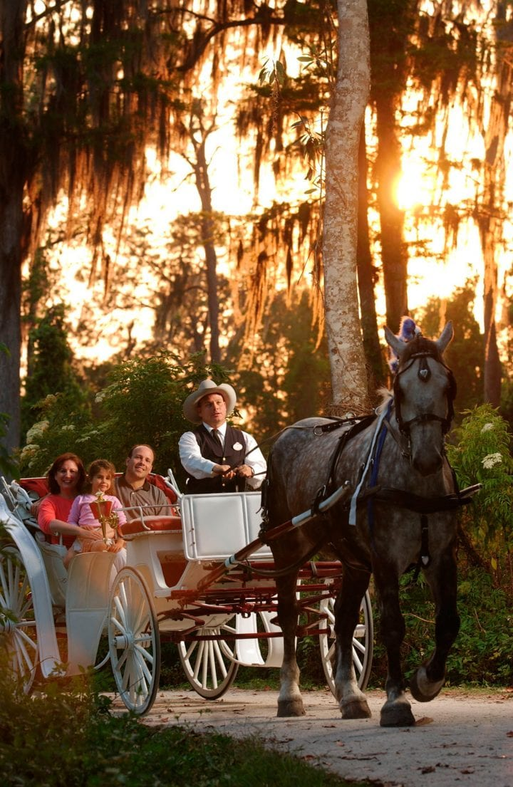 Disney's Fort Wilderness Resort and Campground in Orlando Florida