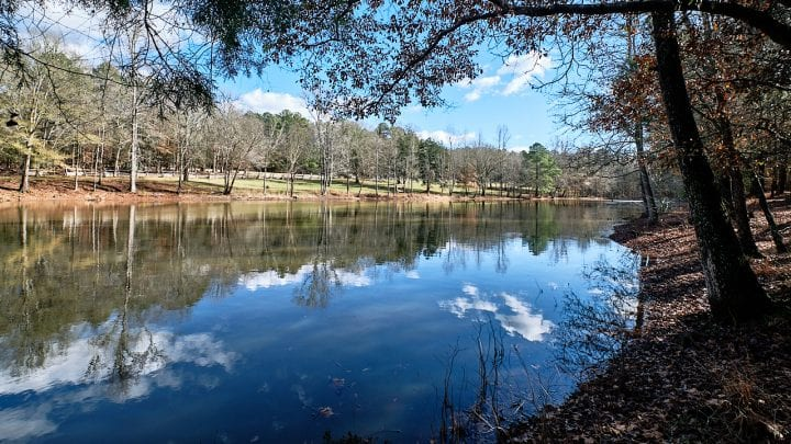 Top 3 Must Visit South Carolina State Parks for Families - MUSGROVE MILL 5