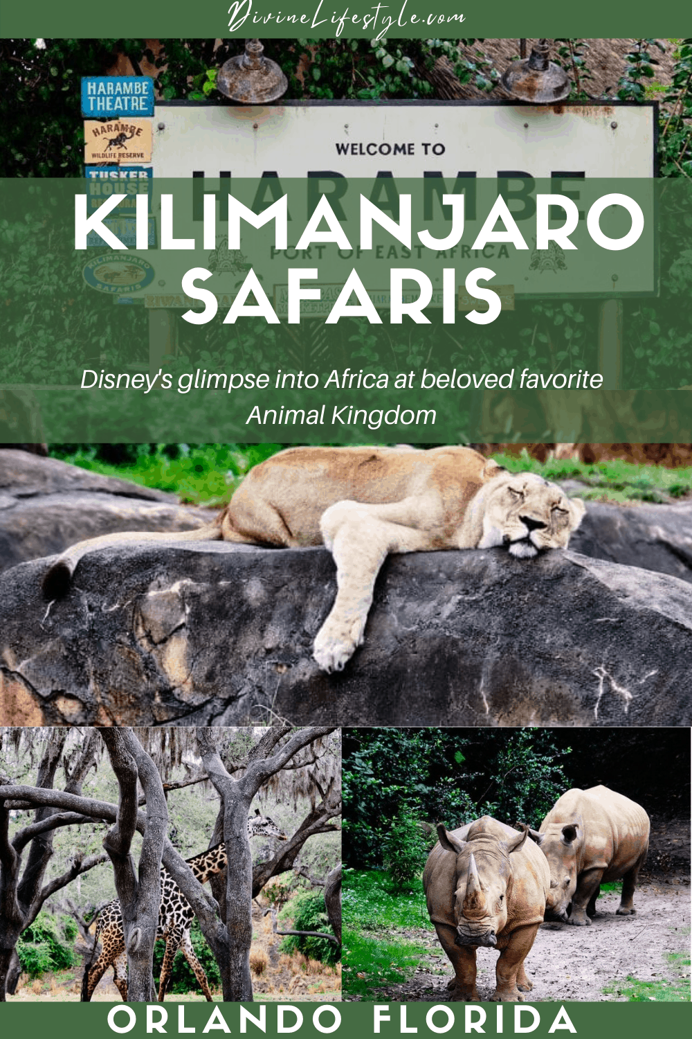 Ultimate Guide to Kilimanjaro Safaris by Disney