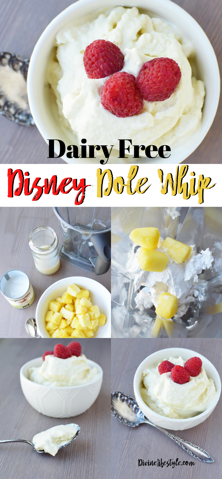 DIY Disney Dole Whip Dairy Free Recipe | Whipped NICE Cream