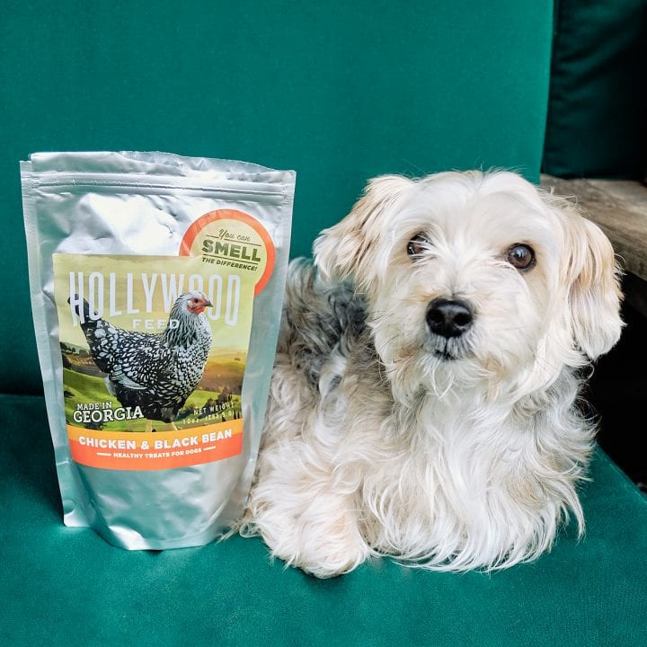 Get Hollywood Feed Curbside Pick-Up for the Pet Supplies You Need