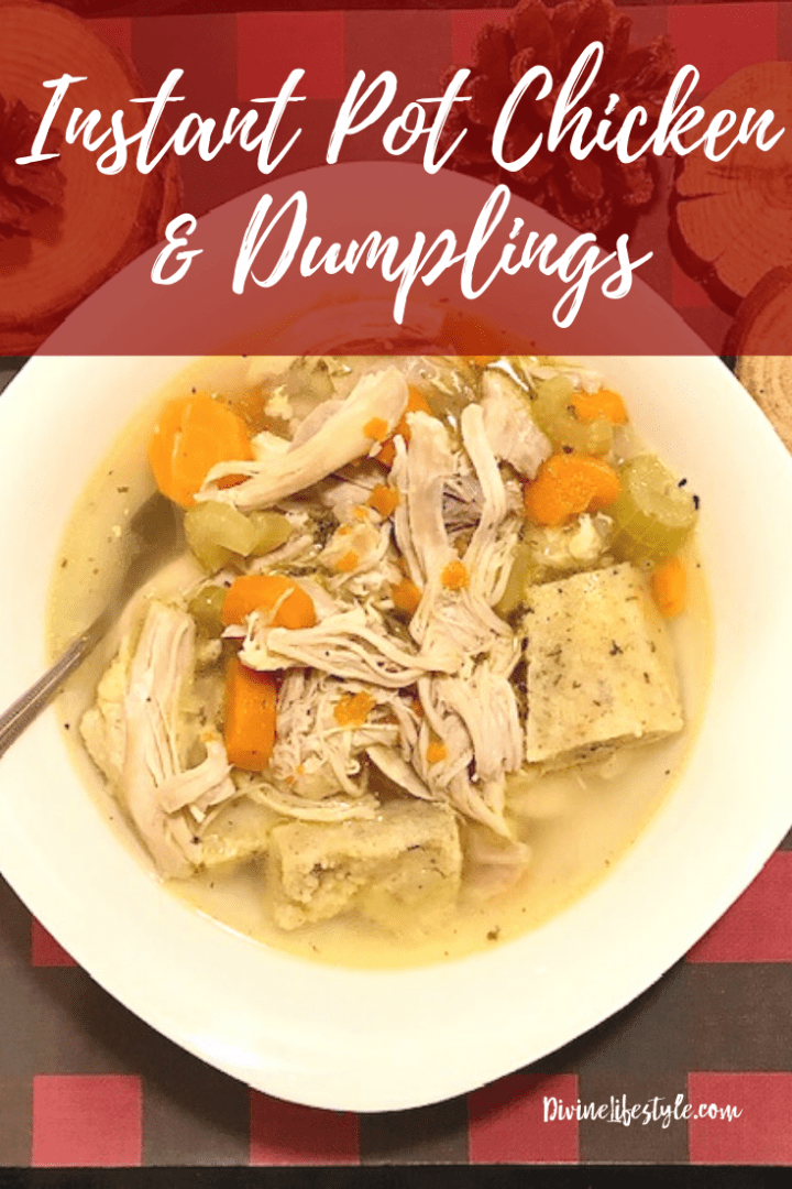 Instant Pot Chicken and Dumplings from Scratch