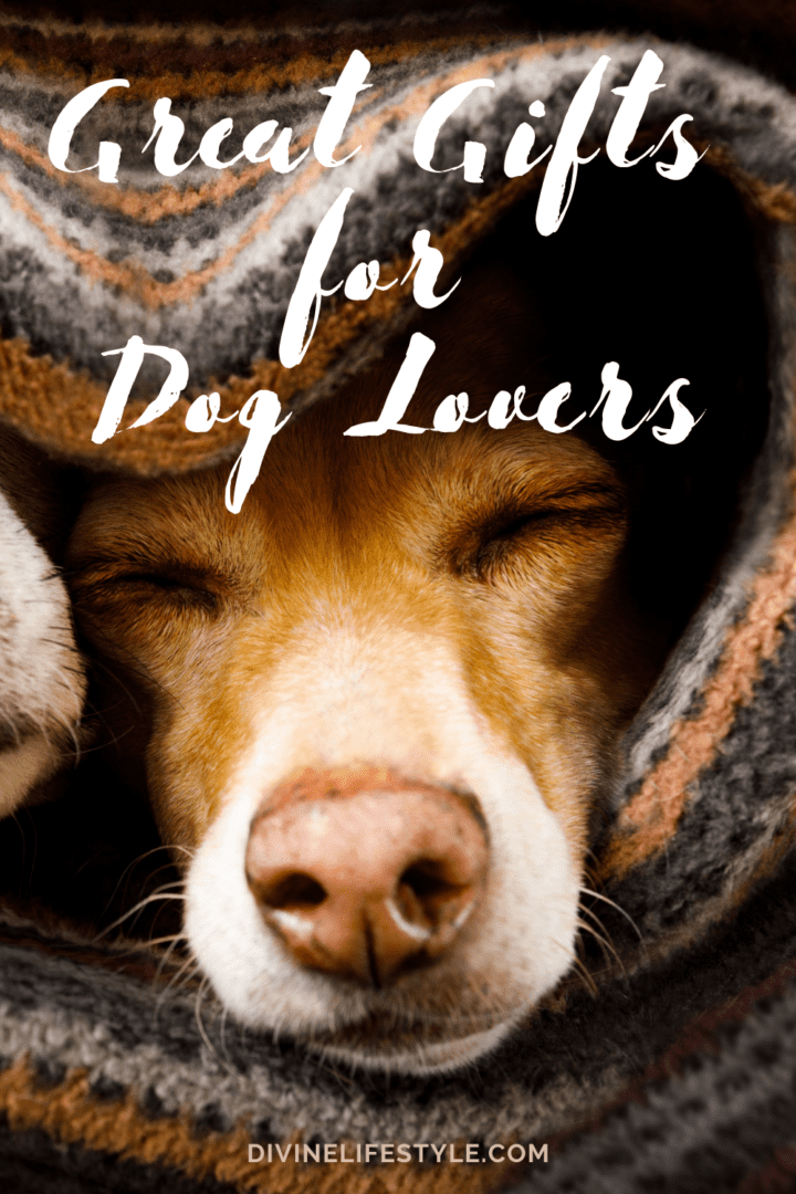 great gifts for dog owners