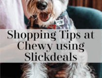 Shopping Hacks and Tips at Chewy using Slickdeals